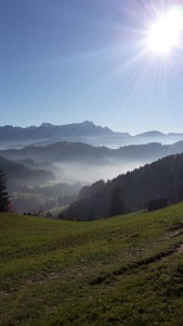 Herbst_Saraj Mühlemann1